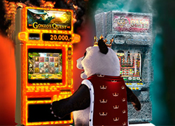 Panda watching Hot and Cold slot